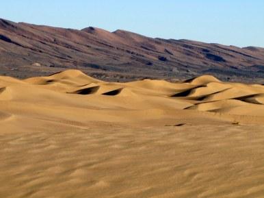 Moroccan Saharah