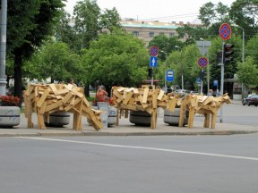 Cows in Downtown Riga to celebrate the Solstice