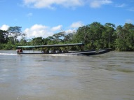 "Our ""buses"" in the Amazon"