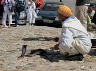 Snake Charmer, Tangier, Morocco