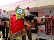 Getting my Packers Karma on in Jaipur