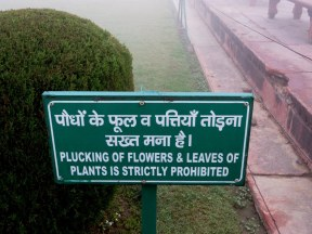 Plucking flowers and leave is strictly forbidden.