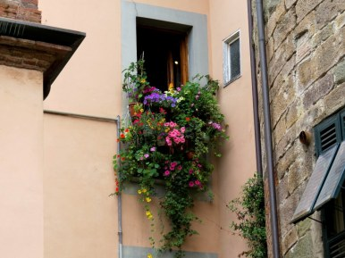 When you don't have a yard you make beautify hanging gardens from your window. Lucca