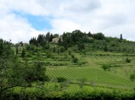 Tuscan countryside where we had a hands-on Italian cooking lesson