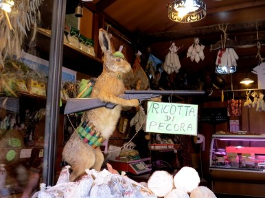 Beware of hares with guns, Norcia