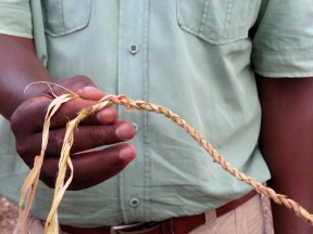 Learning to make rope from a tree branch