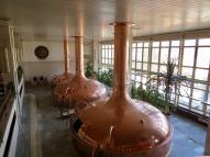 Budweiser Budvar brewery tour.