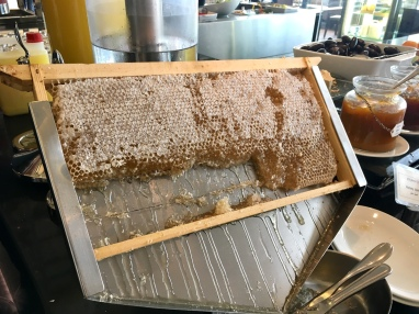 Fresh honey on the breakfast buffet in Cairo