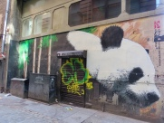 Glasgow's Panda
