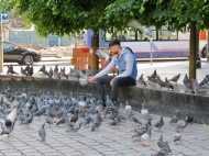 A Man and his Birds